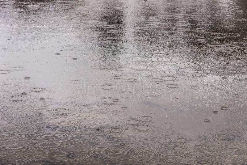 Gocce di pioggia che cadono sul lago immagine stock