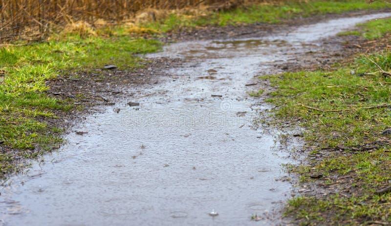 Gocce di pioggia pesanti che spruzzano su un sentiero per pedoni sommerso della sporcizia da parte a parte immagine stock