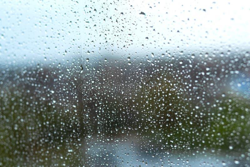 Gocce di pioggia sul vetro sui precedenti della natura immagine stock