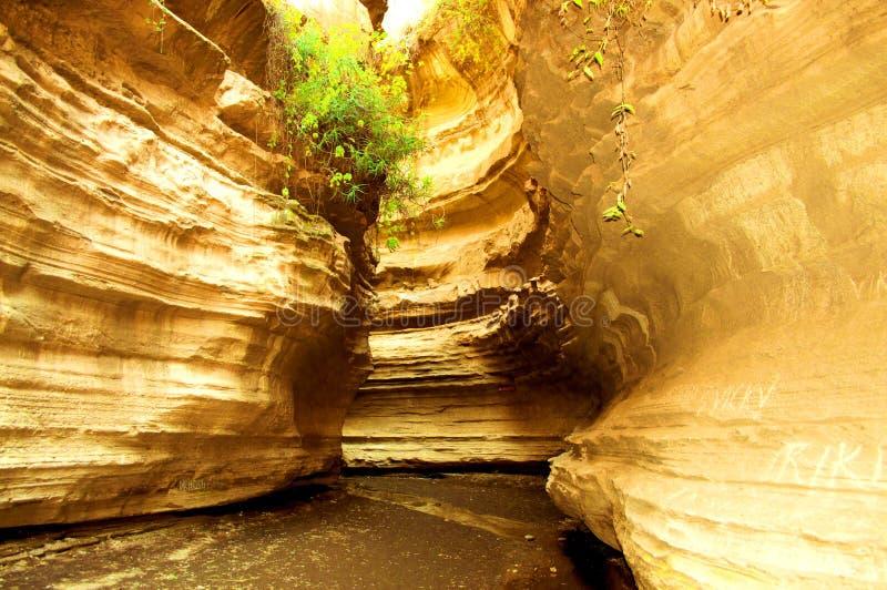 Gocce intasate d'acqua nel Parco Nazionale Hells Gate in Kenya fotografie stock