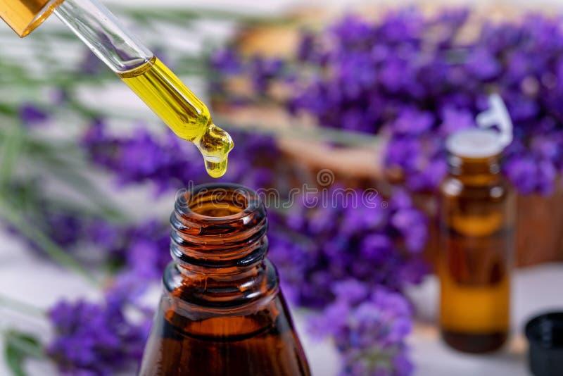 Goccia dell'olio essenziale della lavanda dalla pipetta sopra la bottiglia immagini stock libere da diritti