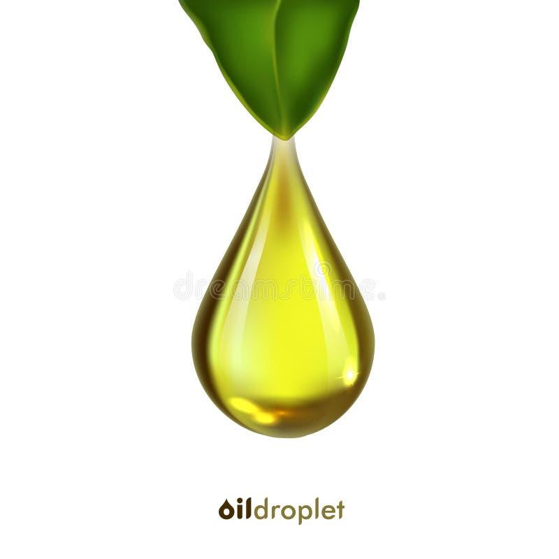 Goccia dell'olio, icona di vettore con la foglia immagini stock libere da diritti