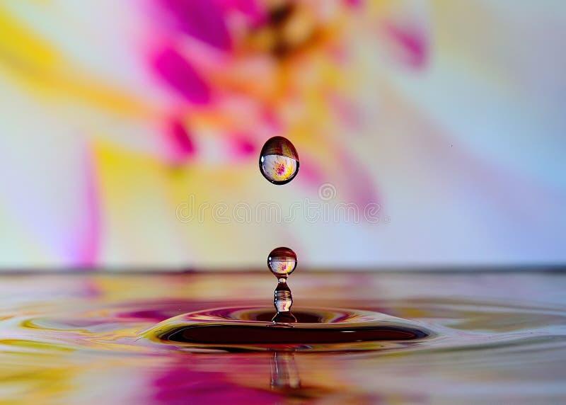 Gocciolina di acqua immagine stock