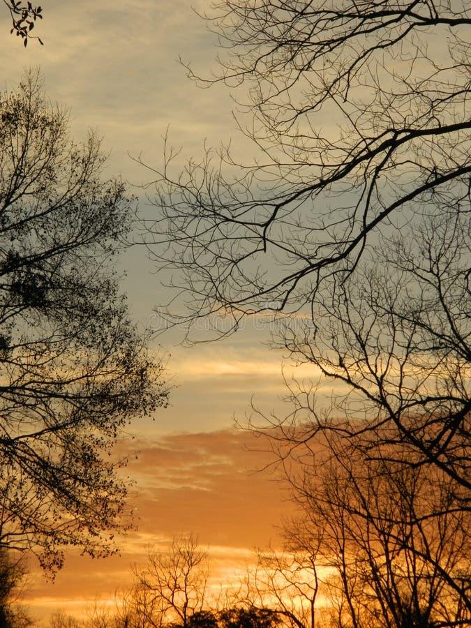 God& x27; capolavoro di s fotografie stock libere da diritti