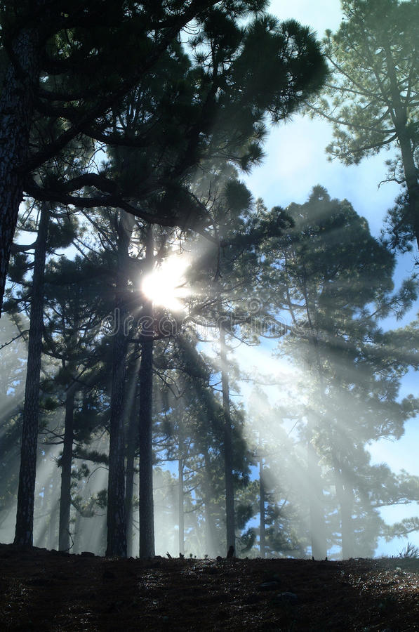 God rays 1. On the mountain la roque des los muchachos on the canarian island la palma the light of the sun builds god rays in the clearing away of the morning stock photos