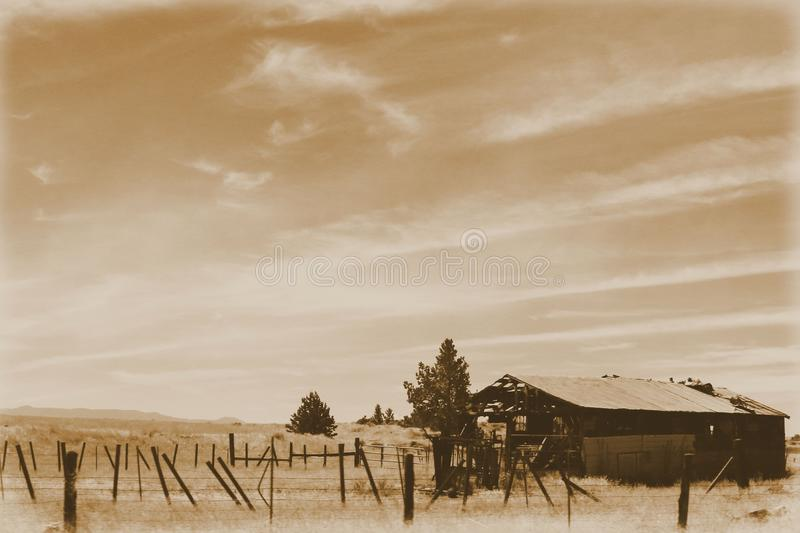 God`s Creation, Dilapidated Beauties, Sepia. A display of God`s Creation, Dilapidated Beauties , forest, trees, mountains, blue sky, landscape stock photo