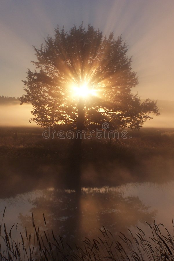 Download God's Revealing Glory! 2 stock photo. Image of brown, reflective - 1127518
