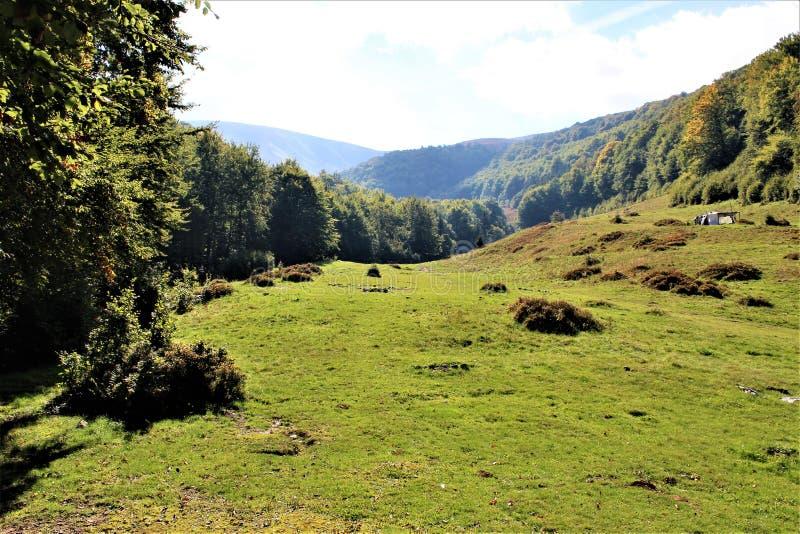 Goda del vostro viaggio con le montagne di Carpathians, bellezza del villaggio fotografia stock