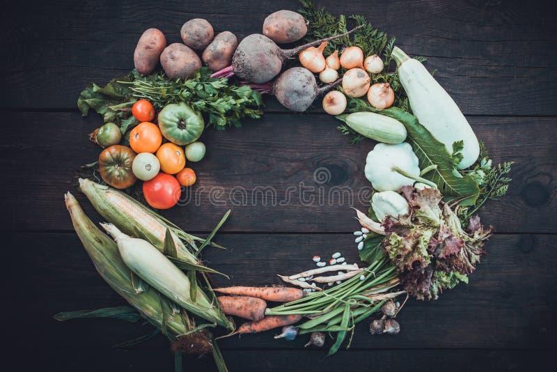 Goda hälsor bantar mat, överflödhöstgrönsaker royaltyfri fotografi