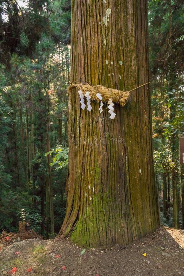 Goddelijke Booma yorishiro in Shinto-terminologie is een objecten capa stock afbeelding