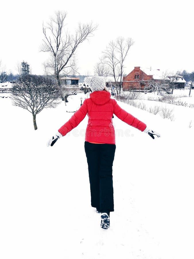 Godere del giorno di inverno immagini stock