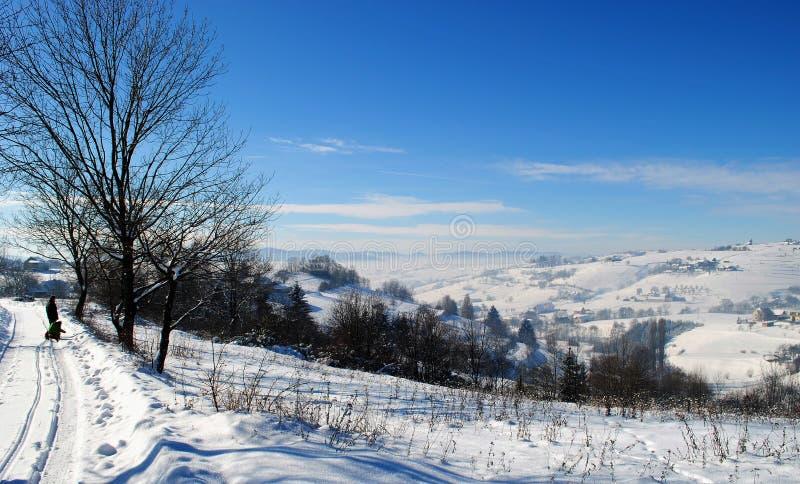 Godere di un giorno di inverno meraviglioso fotografie stock libere da diritti
