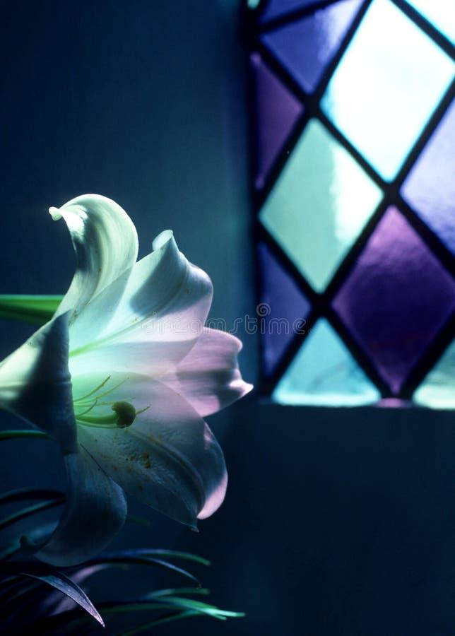Free Gods Light Royalty Free Stock Photography - 6116567