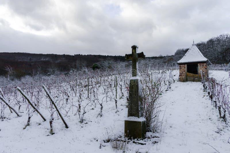 Godsdienstig kruis in de winter sneeuwwijngaard stock afbeeldingen
