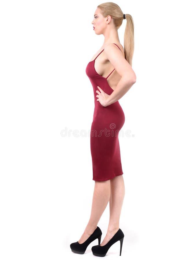 Goed gevormde vrouw in het glascijfer van het profieluur royalty-vrije stock foto