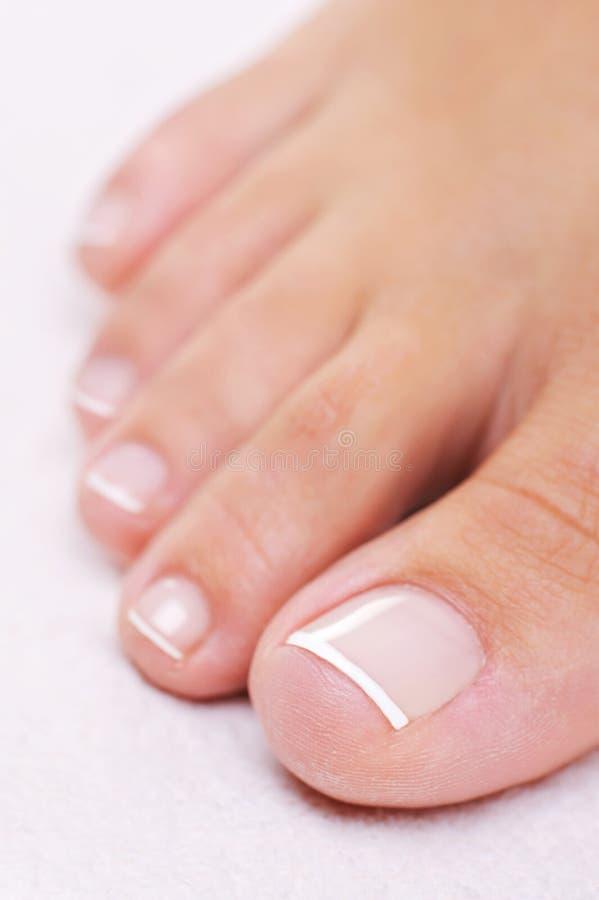 Goed-verzorgde vrouwelijke voet met een Franse pedicure royalty-vrije stock afbeeldingen