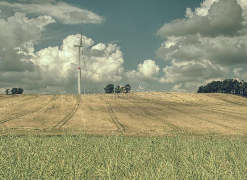 Goedkope energie De turbines van de windenergie op gebied met blauwe hemel stock foto