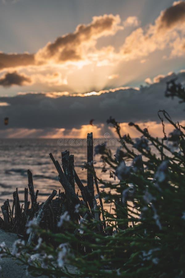 Goeree-Overflakkee,荷兰,Brouwersdam史诗日落天空全景  免版税图库摄影