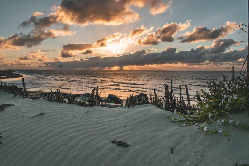 Goeree-Overflakkee,荷兰,Brouwersdam史诗日落天空全景  免版税库存图片