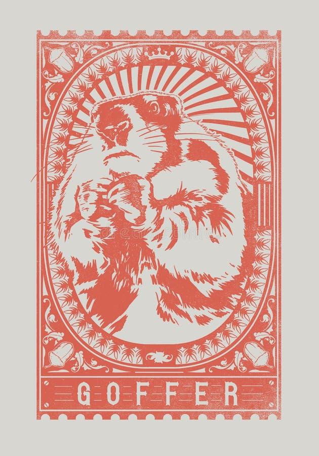 Download Goffer stock vector. Illustration of wild, castor, design - 31519279
