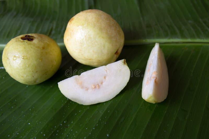 Goiaba em uma folha da banana Guajava fresco do psidium imagem de stock royalty free