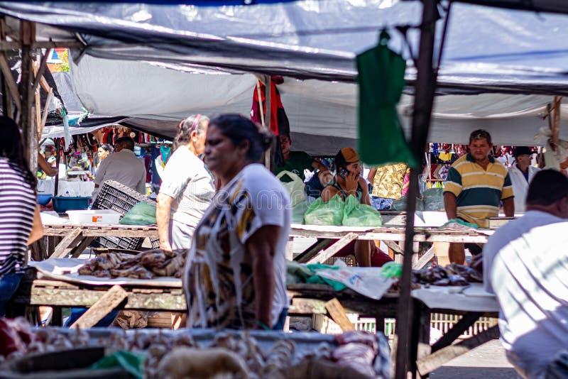 Goianinha 13 luglio 2019 Gli acquirenti di un mercato agricolo Picturesmo mercato alimentare all'aperto immagine stock libera da diritti