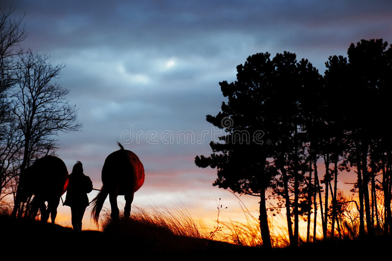 Going home stock photography