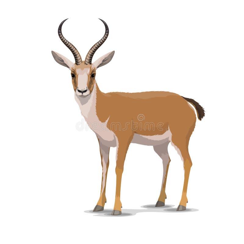 Cartoon goitered gazelle animal, vector stock illustration