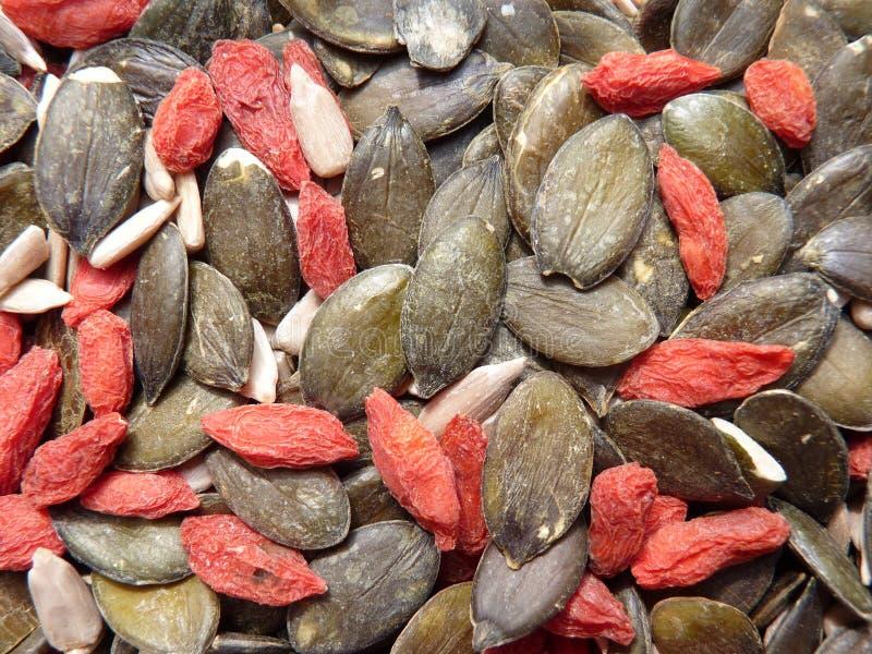 Goji и зеленые семена тыквы стоковые изображения