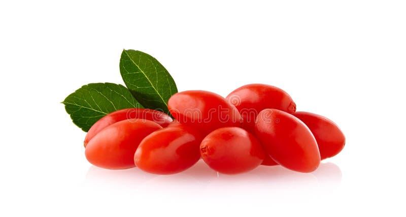 Goji ягоды при изолированные лист стоковое изображение rf