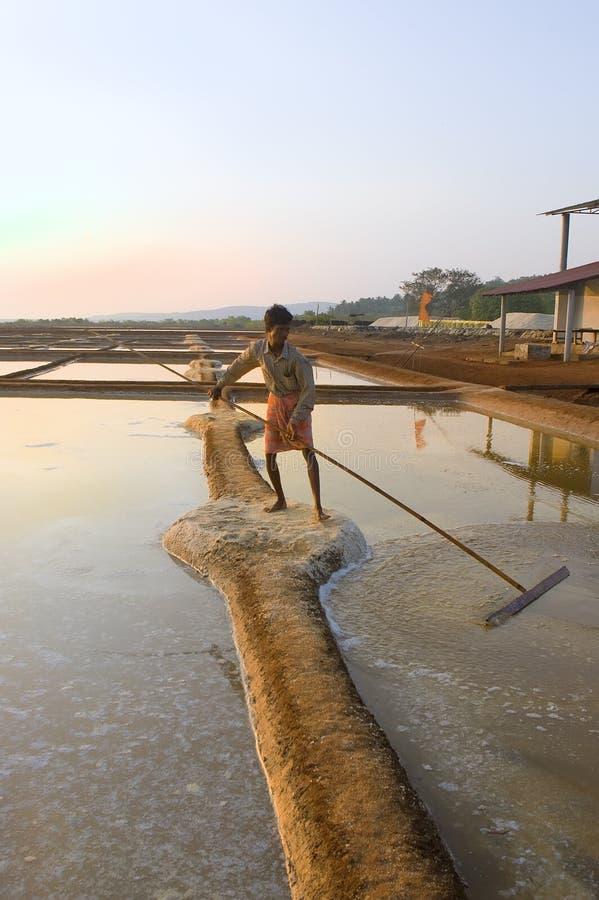 GOKARNA, ÍNDIA - 27 de fevereiro: Plantação de sal perto de Gokarna, Índia fotografia de stock royalty free