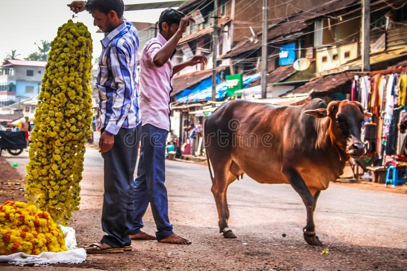 Colors of India. Gokarna Karnataka India November 01, 2017 Portrait of unknown people selling flowers in the street of Gokarna town, in the eveningn royalty free stock photo