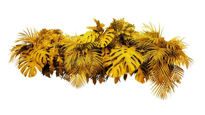 Gol tropical d'arrangement floral de buisson d'usine de feuillage de feuilles d'or image stock