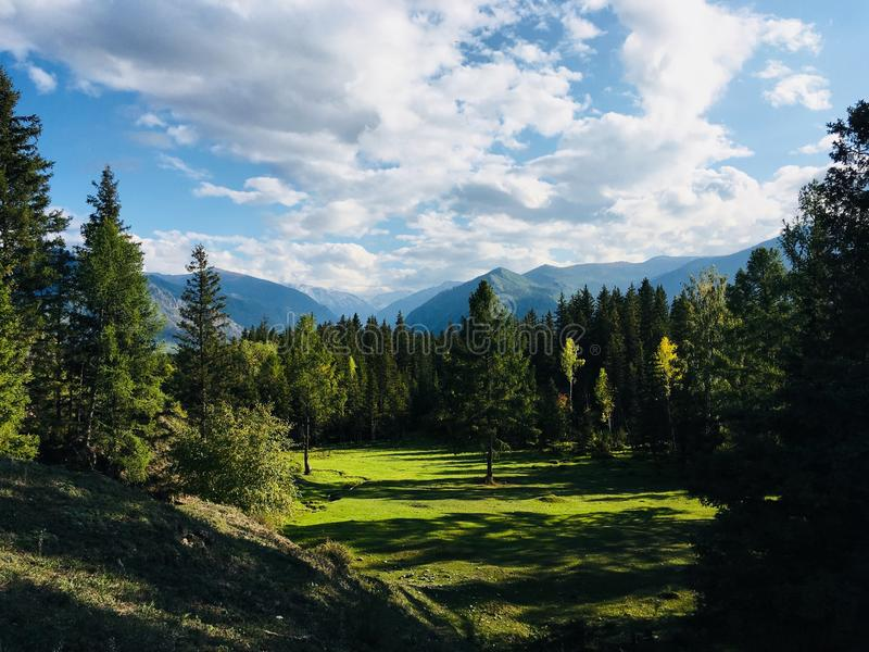 Gola blu Kuragan nelle vicinanze del villaggio Katanda, Gorny Altai immagini stock libere da diritti