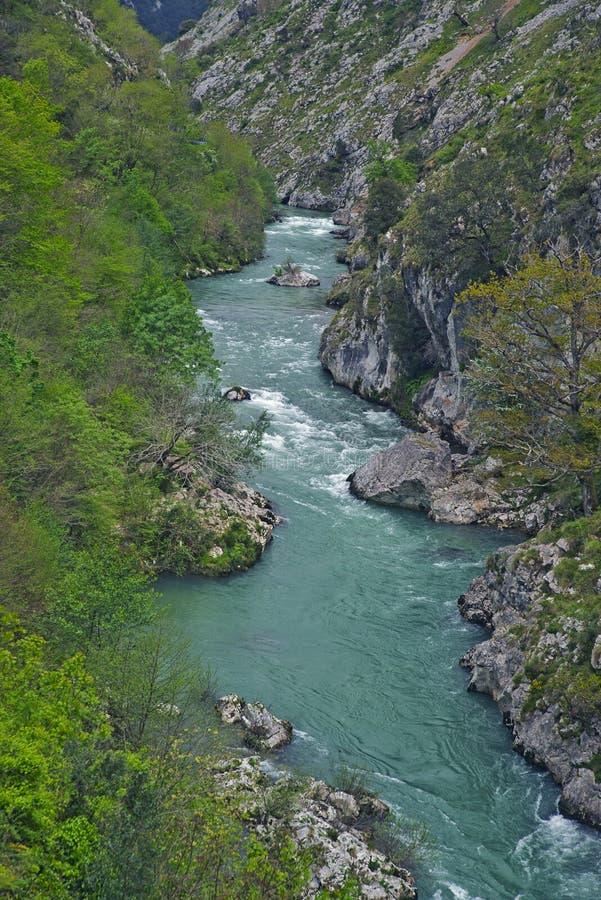 Gola del fiume di Deva, Asturie, Spagna fotografia stock libera da diritti