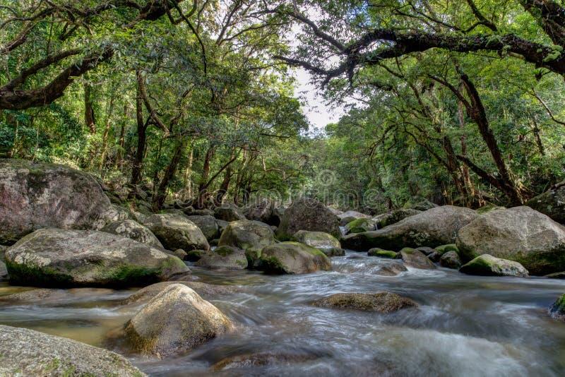 Gola del fiume di Mossman fotografie stock libere da diritti