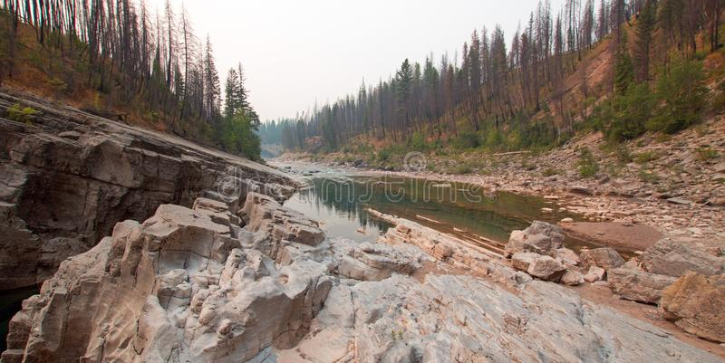 Gola dell'insenatura del prato su South Fork del fiume a testa piatta nell'area di Bob Marshall Wilderness nel Montana U.S.A. immagini stock libere da diritti