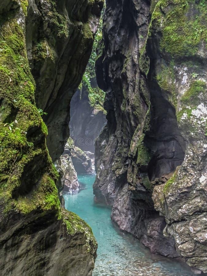 Gola di Tolmino in valle di Soca - Slovenia fotografia stock libera da diritti