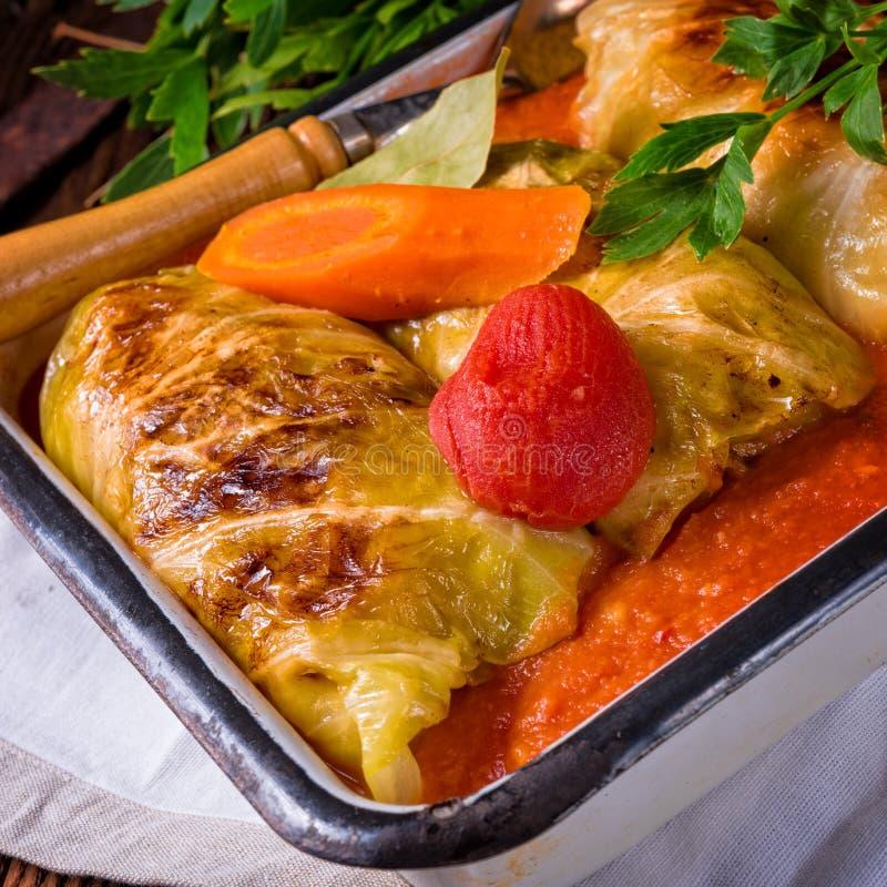 Golabki - polsk kål rullar i tomatsås fotografering för bildbyråer
