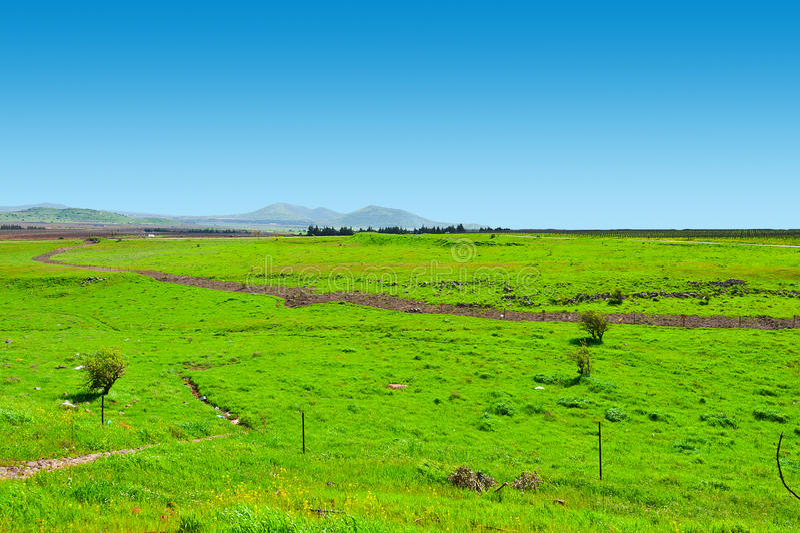 Golan Heights image stock