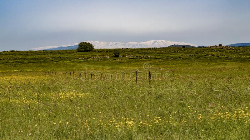 Golan Heights nature Trail - spring 2019. Views of the Golan Heights fron the Golan Trail, a pice of nature in northern israel stock photos
