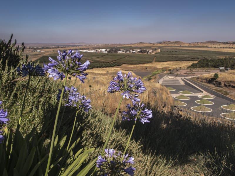 Golan Powulkaniczny Parkowy Avital zdjęcia stock