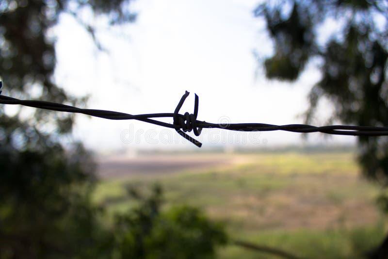 Golani, filo spinato sul campo minato fotografia stock libera da diritti