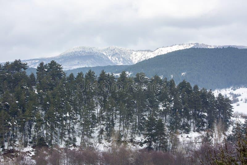 Golcuk / Bolu / Turkey, winter season snow landscape.  royalty free stock photos