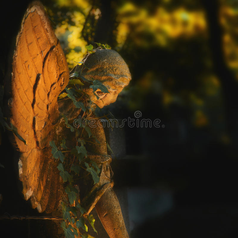 Gold angel on a cemetery against the background of leaves. (details royalty free stock photos