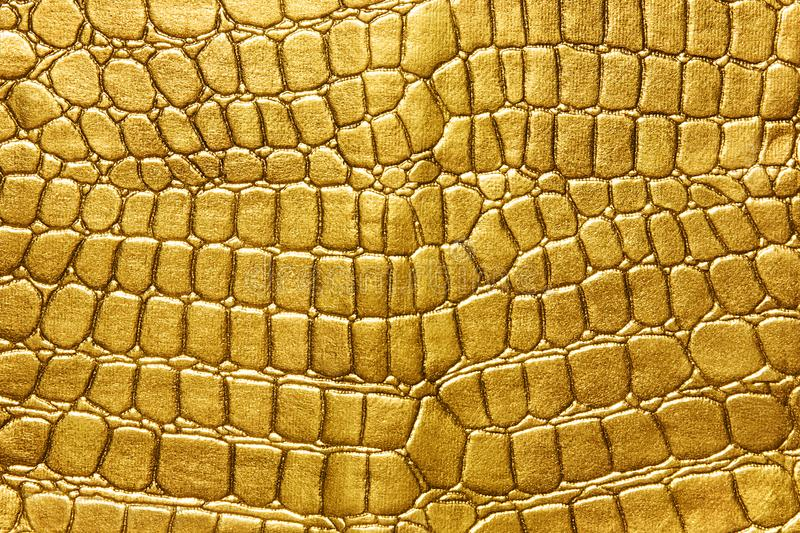 Gold background. background of gold lizard armor pattern. Crocodile yellow or golden skin. For luxury items stock image