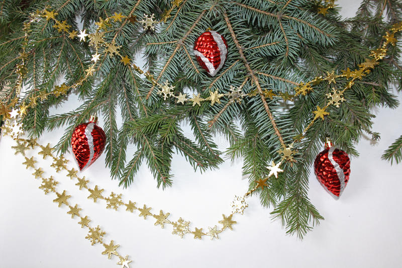 Gold beads on the branches of spruce stock image
