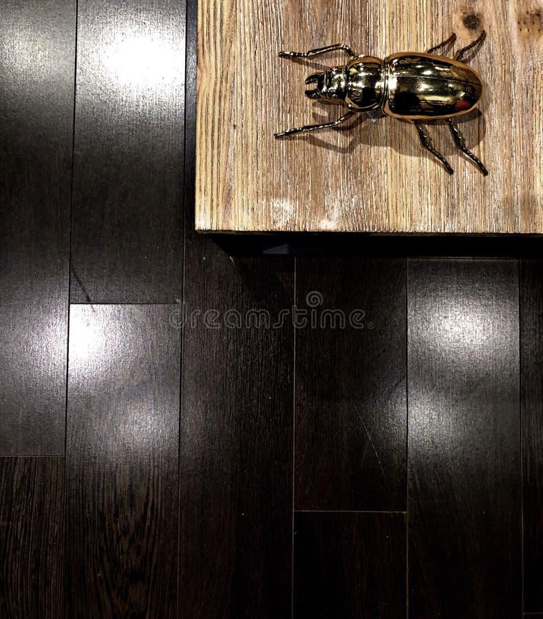Gold bug home decoration stock photos