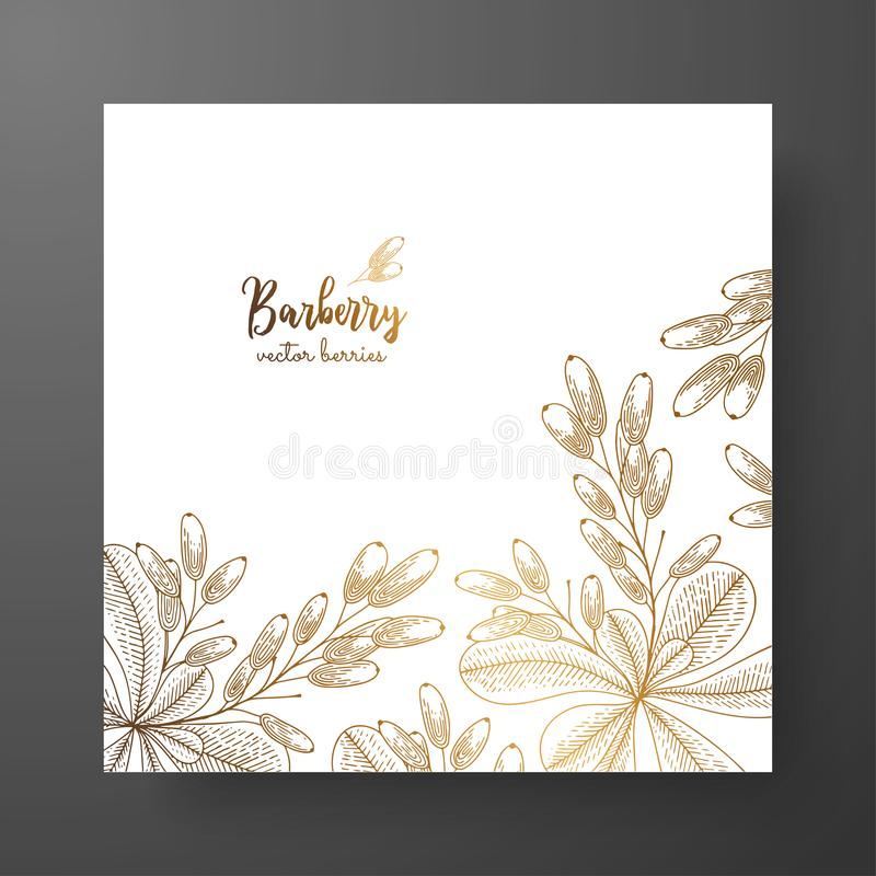 Gold card template for invitations, greeting cards, postcards, package design, or as a complement to a vintage project. Place for. Text. Vintage botanical stock illustration