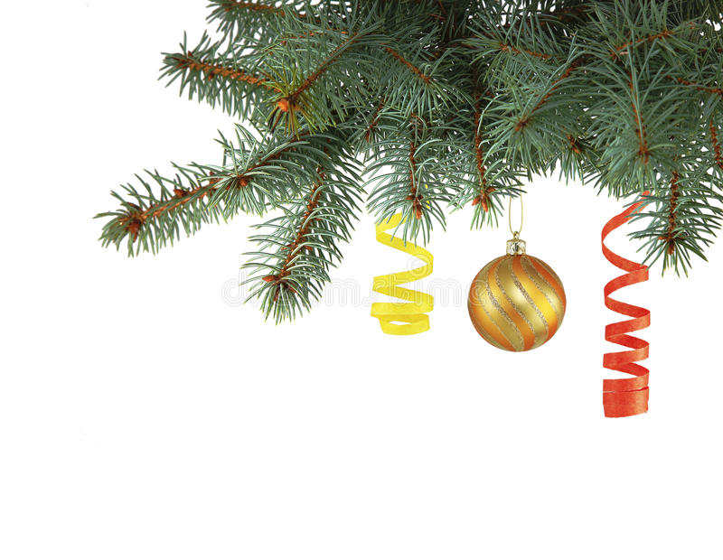 Gold christmas ball and new year`s serpentine hanging from Christmas trees royalty free stock photo